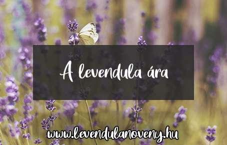 levendula ár